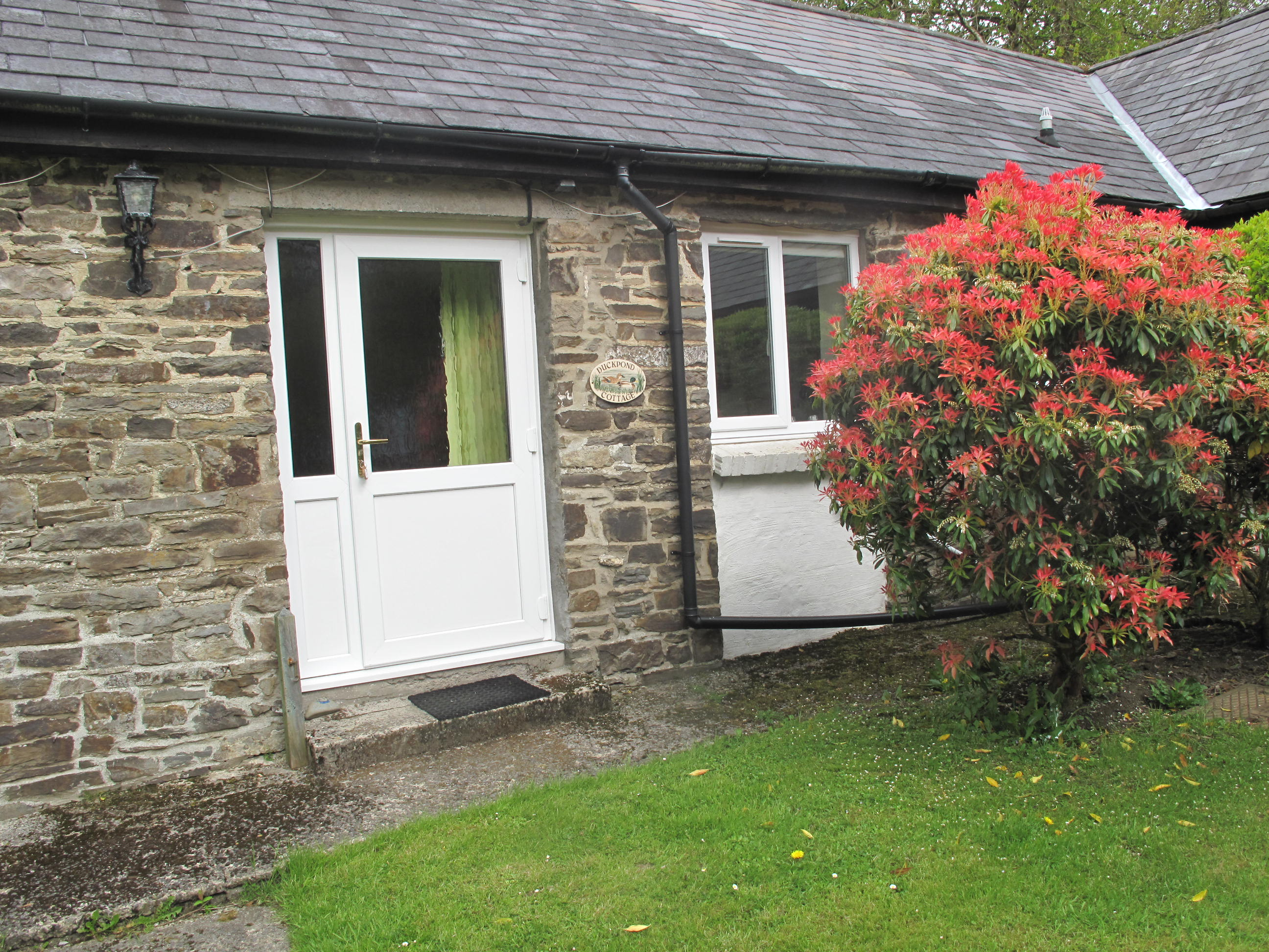 Duckpond Holiday Cottage West Wales Dog Friendly